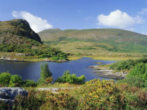 roy-rainford-ring-of-kerry-between-upper-lake-and-muckross-lake-killarney-munster-republic-of-ireland-eire.jpg